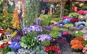 beautiful flower garden house of also home ideas flowers