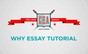 How To Start A College Application Essay Examples How To Do Admissions Essay Research