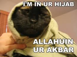 Tags: kitty | cat | hijab |
