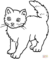 nice kitty cat coloring pages color printable cecilymae