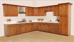 Kitchen Cabinet Inside Designs by Kitchens In A Cupboard Boncville Com