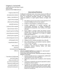 resume sample travel consultant resume sample best format travel agent Reentrycorps