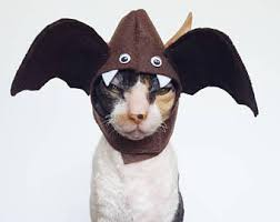 Bat Costumes Halloween Costumes Pets Etsy