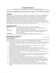 Corporate Resume Examples  cover letter controller resume example             Fields related to senior travel consultant