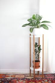 28 plants for apartments my 1200sqft inside summer rayne