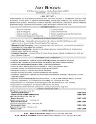 Retail Professional Summary Resume Example 47 Professional Summary Examples Professional