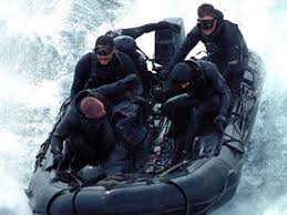 called Seal Team 6.