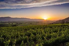 thanksgiving foto visit napa valley wineries hotels events u0026 restaurants
