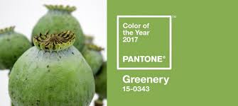 and the 2017 pantone color of the year is u2026