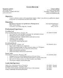 Resume Examples  Resume Objectives For High School Students     longbeachnursingschool     Education And Professional Experience Resume Objectives For High School Students With Sales And