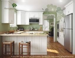 Discount Kitchen Cabinets Michigan Ice White Rta Shaker Style Kitchen Cabinets Wood Birch Finish