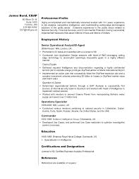 Research Analyst Sample Resume by Business Analyst Resume Sample James Bond