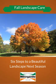 Fall Landscaping Ideas by 33 Best Fall Lawn Care Images On Pinterest Fall Lawn Care