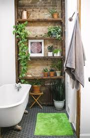 25 best peace lily ideas on pinterest best indoor plants