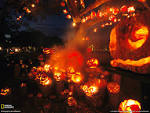 Wallpapers Backgrounds - Grinning jack o lanterns spill tree porch festive