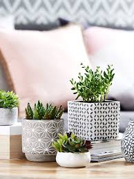 Best  Coffee Table Accessories Ideas On Pinterest Coffee - Living room side table decorations