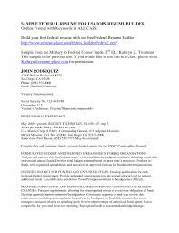 Resume Professional Writers Reviews  resume writing companies