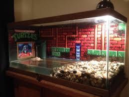 best 25 turtle aquarium ideas on pinterest aquarium ideas fish