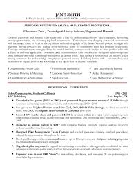 Professional Resume  senior level management professional resume       free sales resume templates