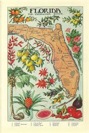 Map Of Clearwater Florida 23 Best Vintage St Pete Clearwater Images On Pinterest Vintage
