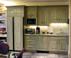How To Remodel Old Kitchen Cabinets Kitchen Adorable Green Kitchen Cabinets With Kitchen Refrigerator