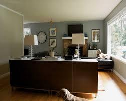 Teal Livingroom by Captivating 40 Dark Grey Walls Living Room Ideas Design