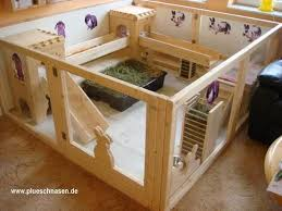 best 25 bunny home ideas on pinterest rabbits bunny care and