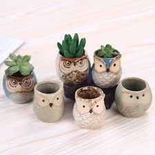 Succulents Pots For Sale by Amazon Com Rose Create 6 Pcs 2 5 Inches Owl Pots Little Ceramic