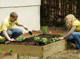 Planning A Raised Bed Vegetable Garden by How To Build A Super Easy Raised Bed Bonnie Plants
