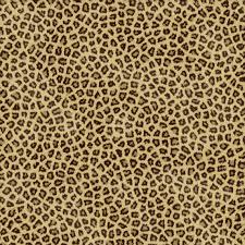 cheetahs cheetah print and background on pinterest idolza