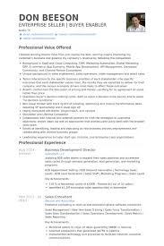 Ecommerce Resume Sample by Business Development Director Resume Samples Visualcv Resume