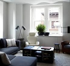 elegant masculine bathroom ideasin living room contemporary with