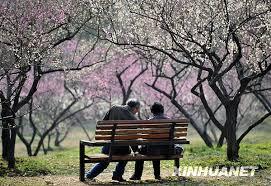 【原创诗钟  连载三】 冬  竹 (四唱)风  月 (五唱) - 德章 - hdzhangyj的博客
