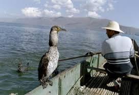 آآغربـ طرقـ صيد سمكـ... طريقهـ قديمهـ جدآآ لصيد آلسّمكـ Images?q=tbn:ANd9GcSh51C-f-7Ff-kVZ7JmydyIiIeJCsjiDIqOBuSPlTDPeyfV_ykB