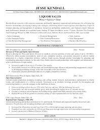 Resume Job Duties Examples It Director Job Description Example Top 8 Practice Director