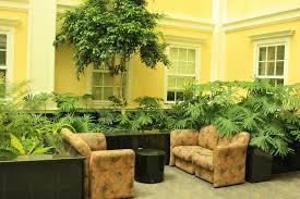 doors indoor t pot decoration ideas garden for wonderful plant