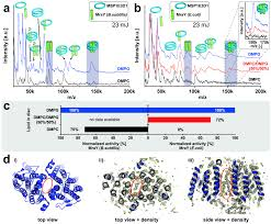 analyzing native membrane protein assembly in nanodiscs by