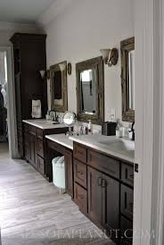 Painting Bathroom by Bathroom Cabinets Painting Bathroom Bathroom Vanity Cabinets