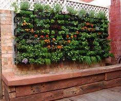 garden u0026 landscaping cool exterior design with container