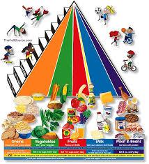 الهرم الغذائي الجديد 2014 نظام