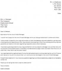 Credit Manager Cover Letter Example   icover org uk icover org uk