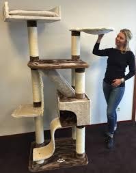 rhrquality cat tree kilimandjaro plus brown cream rhrquality com