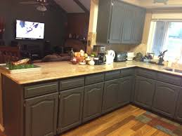kitchen cabinets for log home great home design