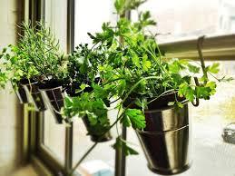 indoor herb garden stand 65 inspiring diy herb gardens shelterness