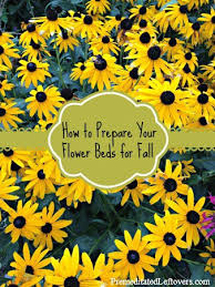 how to prepare your flower beds in the fall for next spring