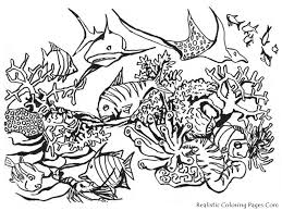excellent ocean animals coloring pages best co 4290 unknown