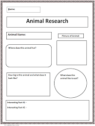 th Grade Animal Research Paper Outline   steps to writing a     FAMU Online
