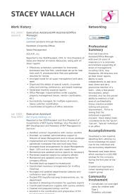 Supervisor Resume Templates  basic resume templates free download     diaster   Resume And Cover Letters