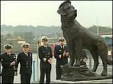 Cão herói de guerra ganha estátua na Escócia