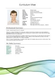 Sample Engineering Resume Engineering Cv Template Engineer     happytom co Resume Examples  Resume Cv Template With Employment History In Company And Profile Information Or Education